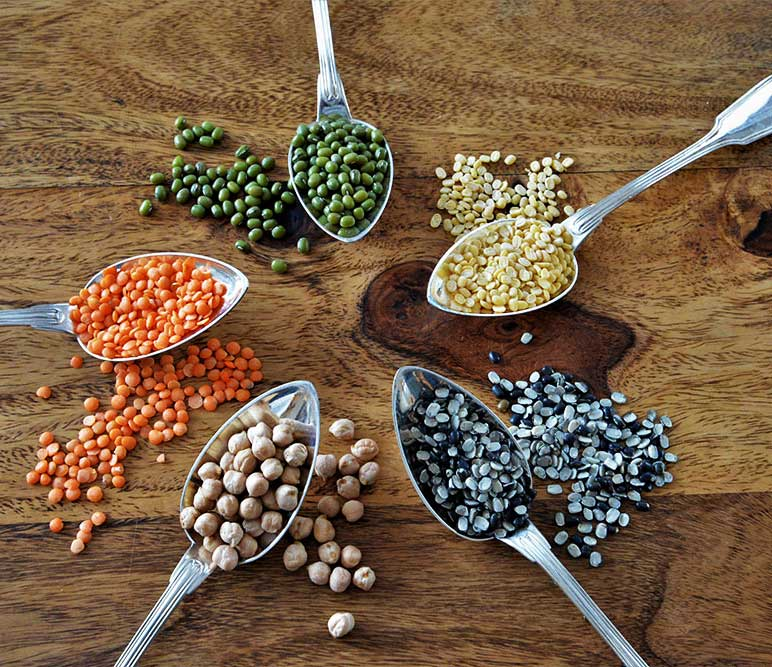 Ernährungsberatung Ayurveda - Ayurvedische Ernährung -